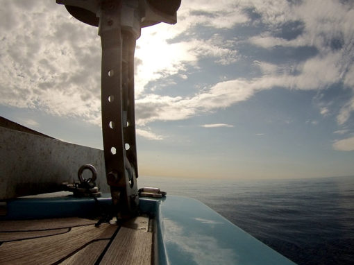 Charter a Savona